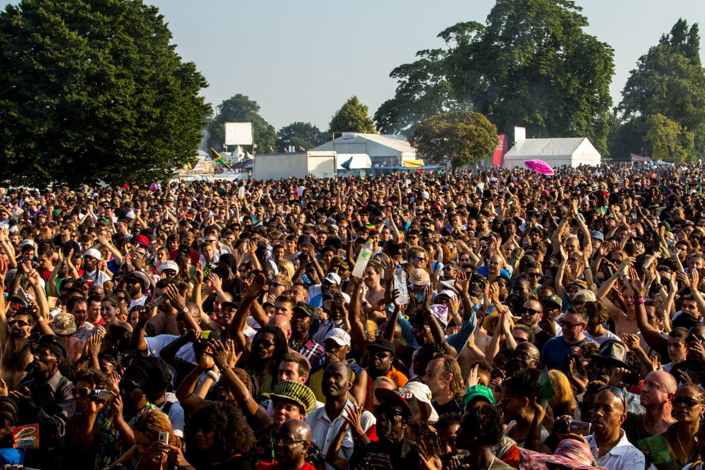40th Annual Lambeth Country Show Resounding Success