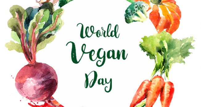 This World Vegan Day, let's go the Vegan way